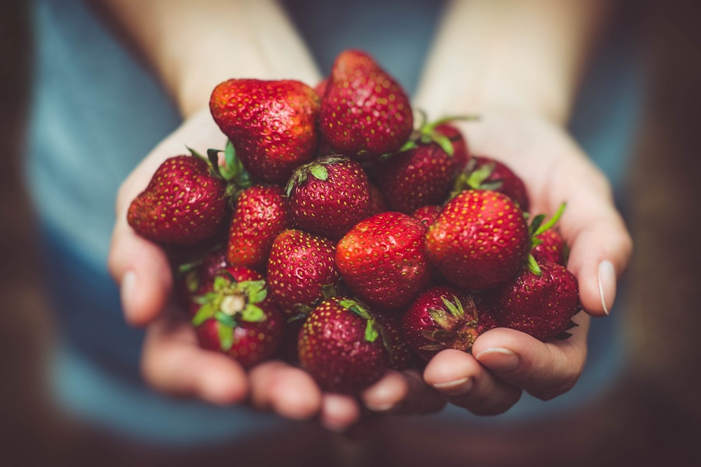 Can strawberries help us live longer?