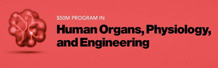human organs physiology and engineering